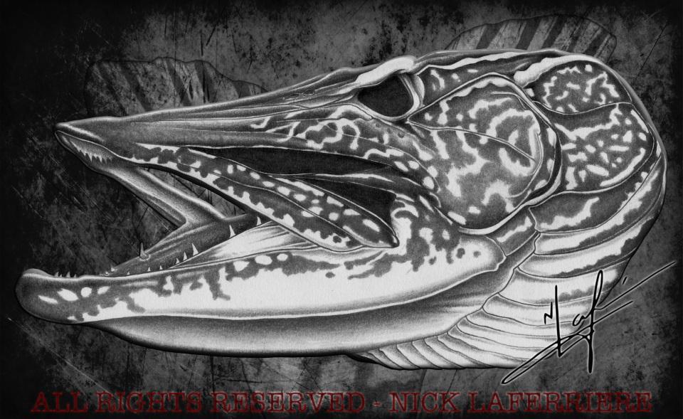 Pike Skull