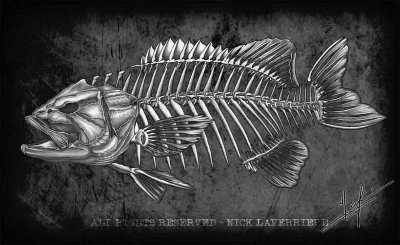 I thought that Smallmouth Bass fanatics needed a new spin on bass art. Introducing the smallie skeleton, exclusive to FISHBUM Outfitters branded apparel. Original pencil artwork by Nick Laferriere