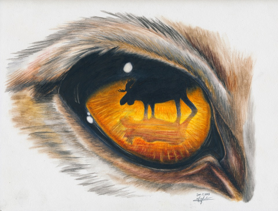wolf eye 30dpi