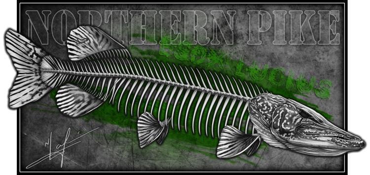 Northern Pike Skeleton     NICK LAFERRIERE