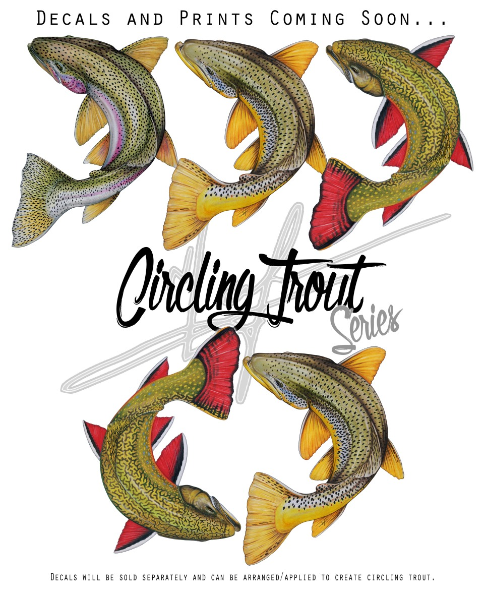 Circling Trout Promo